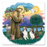 St.Francis (w) / 2 Shelties Square Car Magnet 3&qu