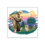 St.Francis #2/ Tibetan Spani Square Sticker 3&quot