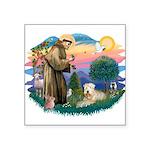 St Francis #2 / Wheaten Square Sticker 3