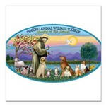 St Francis / dogs-cats Square Car Magnet 3