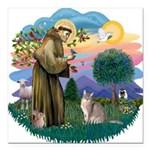 StFran(f)-Abyssinian (bl) Square Car Magnet 3&quot