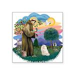 St. Fran (ff) - White Persian Square Sticker 3&quo