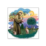St. Fran (ff) - Sphynx cat (f Square Sticker 3&quo