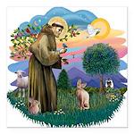 St. Fran (ff) - Sphynx cat (f Square Car Magnet 3&