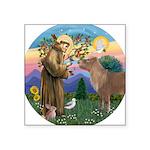 R-St Francis-ShetlandPONY Square Sticker 3
