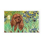 Irises & Ruby Cavalier Rectangle Car Magnet