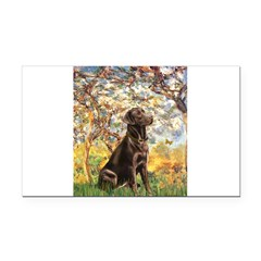 Spring / Choc Lab 11 Rectangle Car Magnet