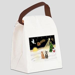 Night Flight-2 Tabbys Canvas Lunch Bag