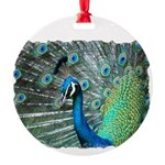 peacock2 Round Ornament