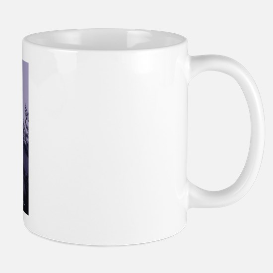 Mt. Saint Helens Mug