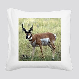 Antelope Square Canvas Pillow