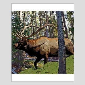 Bull elk in pines Small Poster