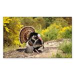 Wild Turkey Gobbler Sticker (Rectangle 50 pk)