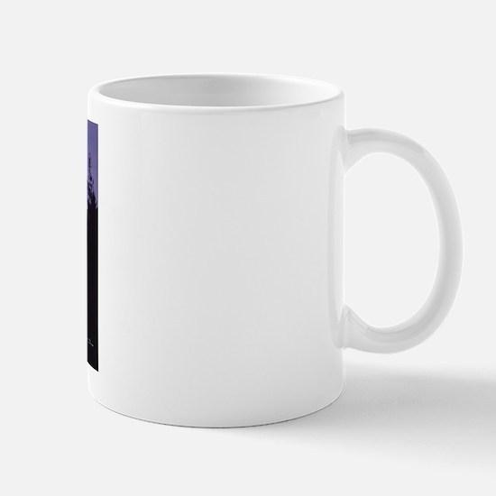 Mt. St. Helens, Washington Mug