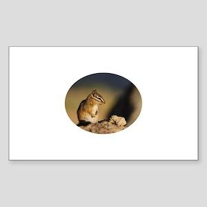 chipmunk Sticker (Rectangle)