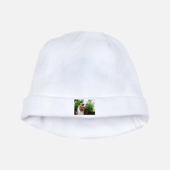 Dexter Flowers baby hat
