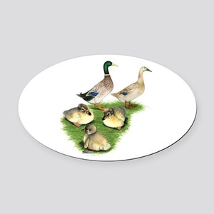 Welsh Harlequin Duck Family Oval Car Magnet