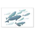 Beluga Whales Art  Sticker (Rectangle 50 pk)