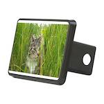 Stalking Kitty Rectangular Hitch Cover