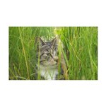 Stalking Kitty 35x21 Wall Decal