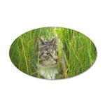 Stalking Kitty 20x12 Oval Wall Decal