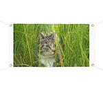 Stalking Kitty Banner