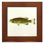 Smallmouth Bass Framed Tile