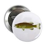 Smallmouth Bass 2.25