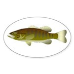Smallmouth Bass Sticker (Oval 50 pk)