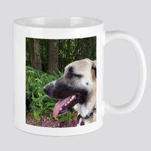 Anatolian in Fern Forest 2 Mug
