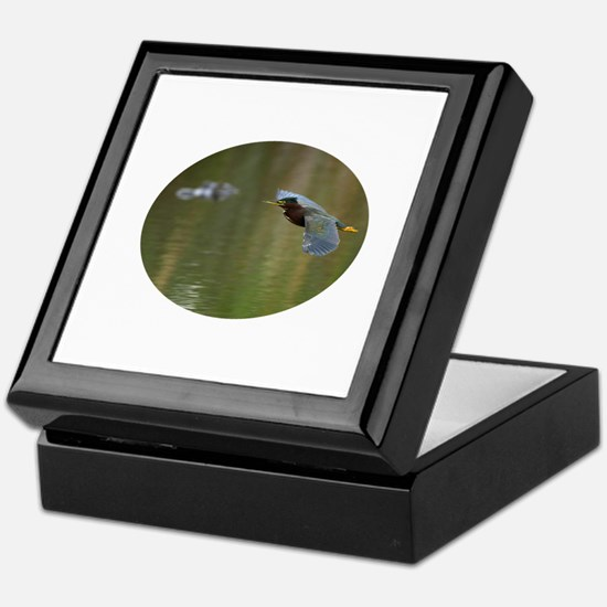 Green Heron & Gator Keepsake Box
