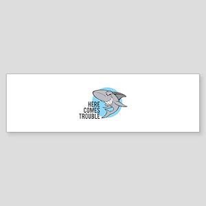 Shark- Here comes trouble Sticker (Bumper)