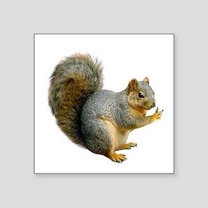 """Peace Squirrel Square Sticker 3"""" x 3"""""""