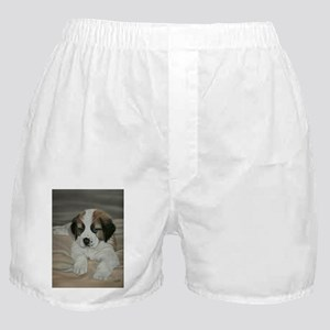 saint bernard puppy Boxer Shorts