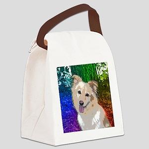 Polly Rainbow Canvas Lunch Bag