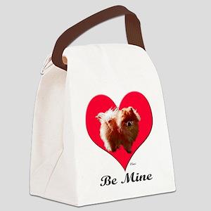 pomvaltshirt Canvas Lunch Bag