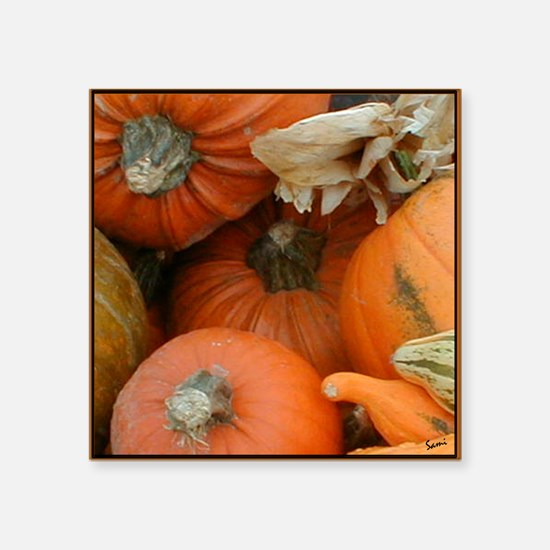 "Halloween Pumpkins Square Sticker 3"" x 3"""