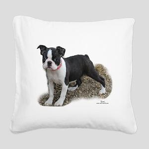 Boston Terrier Pup 1 Square Canvas Pillow