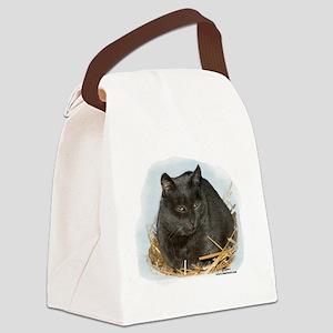 jonesstrawtshirt Canvas Lunch Bag