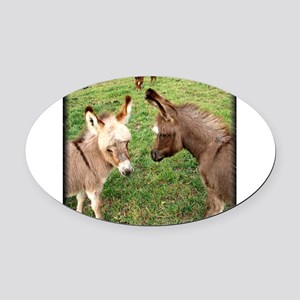 Two Baby Donkeys Oval Car Magnet