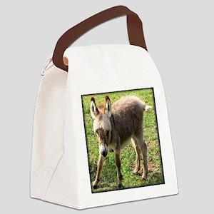 babydonkey11x9 Canvas Lunch Bag
