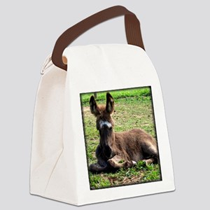bigearsdonkey11x9 Canvas Lunch Bag