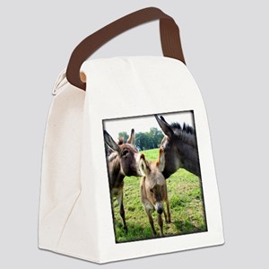 donkeyfamilytee Canvas Lunch Bag