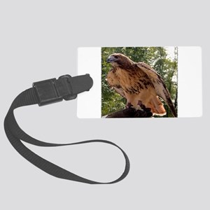 Red Tailed Hawk Ruffled Feath Large Luggage Tag