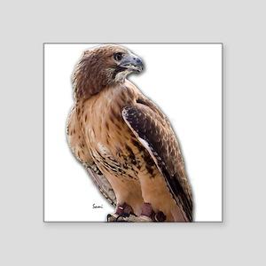 "Red Tail Hawk (3) Square Sticker 3"" x 3"""