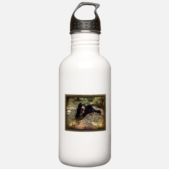 Berner atop Stream Bed, rustic frame Sports Water Bottle