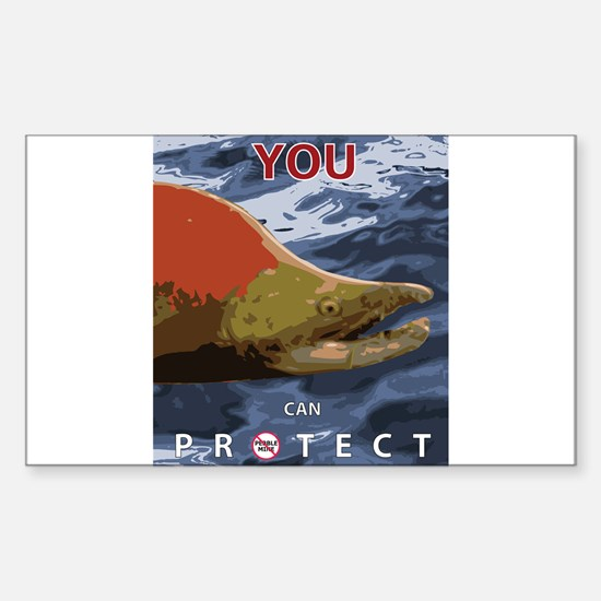 You and the Sockeye (Anti-Pebble Mine Campaign) St