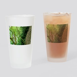 willow and ivy Drinking Glass