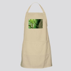 willow and ivy Apron