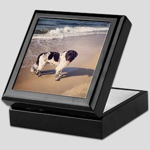 Newfie on the beach 2 Keepsake Box